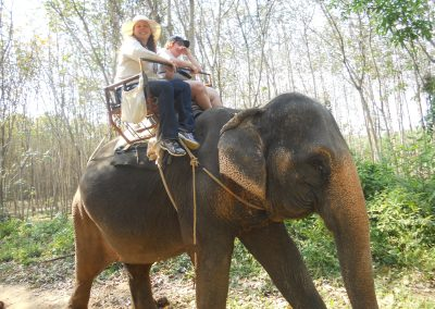Riding Elephants in Thailand